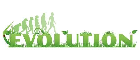 Groene Evolution Evolution tekst versierd met, bloemen, waterdruppels, lieveheersbeestje en aap tot mens silhouetten geïsoleerd op wit