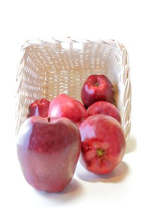 Apples in a white wicker basket photo