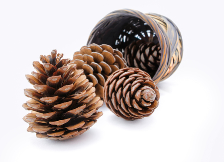 Group of pine cones and wicker basket isolated  photo