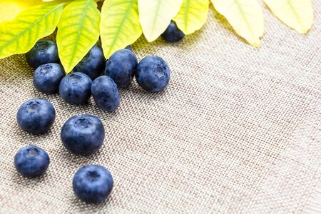 Fresh ripe blueberries with leaves on linen cloth