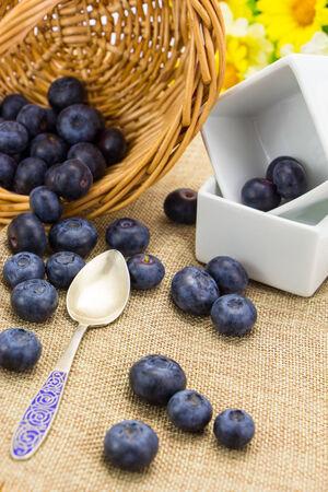 Fresh ripe blueberries harvest in wicker basket