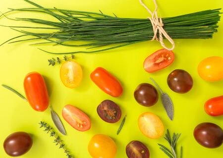 chartreuse: Colorful cherry tomatoes with chives and herbs, on chartreuse yellow background.
