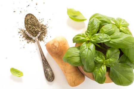 Fresh basil in wooden mortar with pestle and dried on spoon, on withe background.