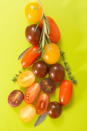 chartreuse: Colorful cherry tomatoes cluster with herbs, on chartreuse yellow background.