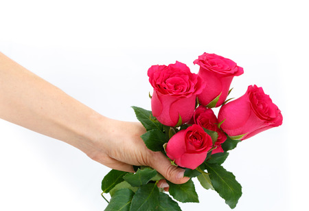 Closeup of a hand holding red roses bouquet, on white background. Stock Photo