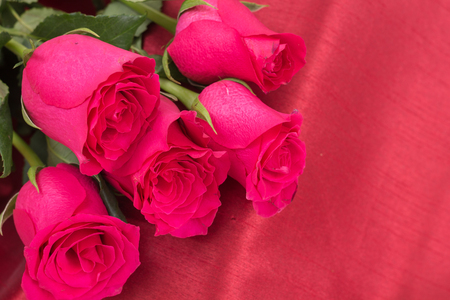 Closeup of red roses bouquet, on red fabric background. Stock Photo