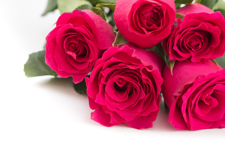 Closeup of red roses bouquet, on white background. Stock Photo