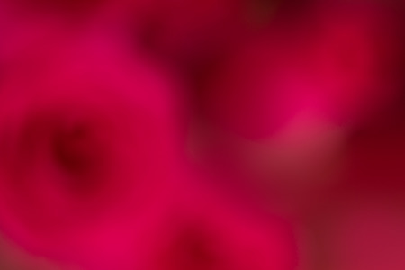 Blurred red roses bouquet abstract backgroundbackdrop Stock Photo