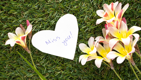 Note in shape of heart with words Miss you!, with flowers on green grass.