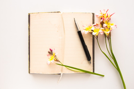 Colorful spring flowers, with blank open diary for text, on white background. Stock Photo