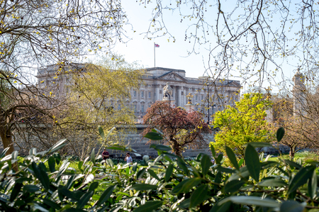 queen of angels: LONDON, UK - April 14, 2015:  Buckingham Palace and gardens in London in a beautiful day