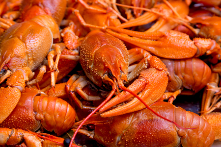 red cooked: Bunch of red cooked crayfish