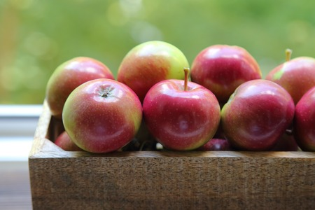 fresh red apples in wooden box on a green background Stock Photo