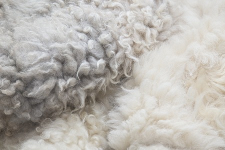 rug texture: A full page of fluffy white material background texture Stock Photo