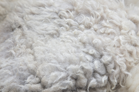 carpet clean: A full page of fluffy white material background texture Stock Photo