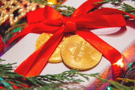 present for christmas or new year bitcoin
