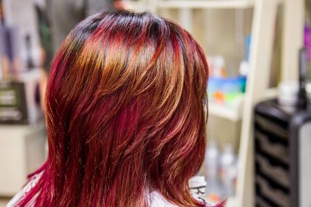 Professional hairdresser dyeing hair. Multicolor Imagens