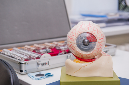 Human eye anatomy model on the background of set of corrective lens. Abstract background to ophthalmology concept. Selective focus, space for text.