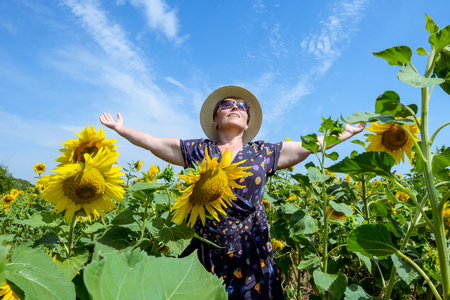 Attractive middle age woman in straw hat with arms outstretched in sunflower field, celebrating freedom. Positive emotions feeling life perception success, peace of mind concept.. Space for text. Stock Photo