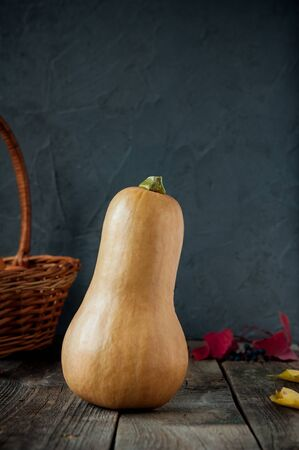 Rijpe oranje Pumpkin stading op de rustieke houten tafel op de donkere stenen achtergrond. Vegetarisch, herfst oogst, thanksgiving, halloween concept. gezonde voeding. Selectieve aandacht. Ruimte voor tekst.