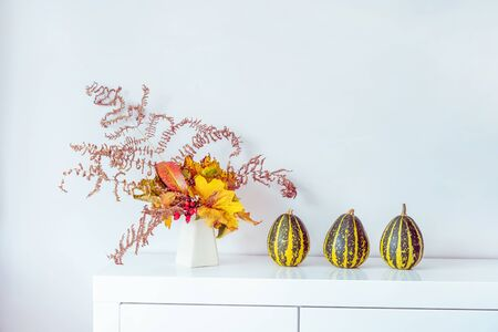 Composition of Three decorative striped pumpkins and vase with bouquet of falling leaves and fern on a white chest, table on a background of white wall. Autumn natural home interior decor. Copy space