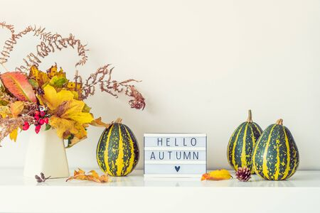 Box with text HELLO AUTUMN, decorative striped pumpkins and vase with bouquet of falling leaves and fern on a white chest, table on a background of wall. Vintage. Autumn natural home interior decor