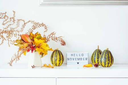 Box with text HELLO NOVEMBER, decorative striped pumpkins and vase with bouquet of falling leaves and fern on a white chest, table on a background of light walls. Autumn natural home interior decor Banco de Imagens