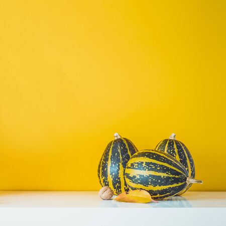 Composition of three decorative green striped pumpkins, leaf and nut on a white table on yellow ocher wall background. Autumn natural home interior decor. Eco, simple style. Square card. Copy space