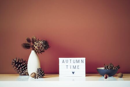Box with text FALL TIME, dried flowers, thorns in light vase, pine cones and other natural decor on brown wall background. Eco, simple home interior style. Minimalism. Autumn concept. Copy space