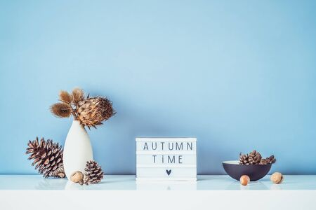 Box with text FALL TIME, dried flowers, thorns in light vase, pine cones and other natural decor on light blue wall background. Eco, simple home interior style. Minimalism. Autumn concept. Copy space. Banco de Imagens