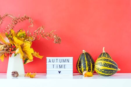 Box with text AUTUMN TIME, decorative striped pumpkins, vase with bouquet of falling leaves and fern on bright red wall background. Autumn natural home interior decor. Eco, simple style. Copy space