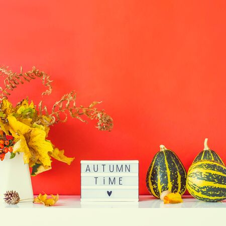 Box with text AUTUMN TIME, decorative striped pumpkins, vase with bouquet of falling leaves and fern on red wall background. Autumn natural home interior decor. Eco, simple style. Square. Copy space Banco de Imagens