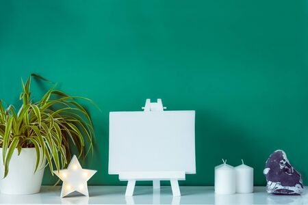 Close up bright scandinavian home interior design. Fresh plants in pots, star shape lamp, blank canvas on a stand and stone detail on green background. Minimalist simple hygge room decor. Copy space Banco de Imagens
