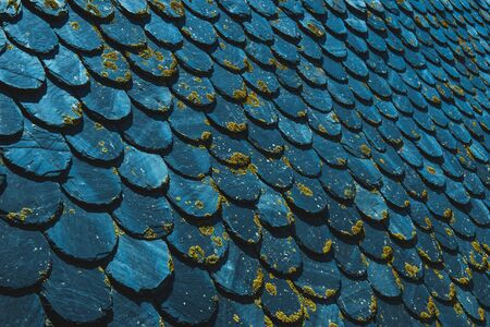 Old vintage roof made with slates and covered with moss surface toned in trendy blue color. Retro geometrical background. Color of the year 2020 classic blue