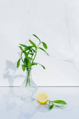 Transparent crystal vase with fresh greenery and half of lemon and glance green leaves on marble background. Direct sunlight, shadows, and reflections. Minimalism and purity. Vertical card. Copy space.