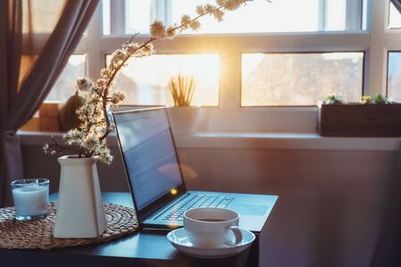 Home work place with laptop, cup of hot drink and blooming brunch in vase on coffee table near window on sunset or sunrise. Freelance, working from home, online learning, studying, home office concept.