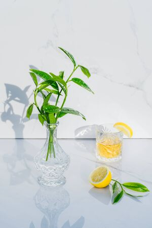 Focused half of lemon, crystal glass with yellow cocktail and vase with fresh greenery on marble background. Goblet with green tea, alcohol drink. Direct sunlight and shadows. Minimalism. Copy space