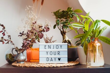 Enjoy your day message on lightbox standing on a table with green home plants. Home gardening corner inside of the house. Calm and cozy area for relaxing. Modern home garden interior style