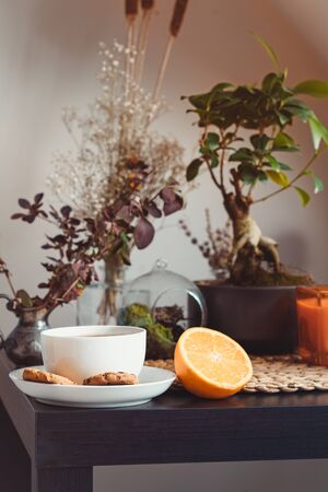 Slow living concept. Cozy area for relaxing and rest with cup of hot tea or coffee, fresh orange fruit and green home plants. Home gardening corner. Modern home garden interior style. Vertical card