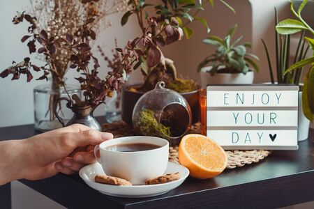 Man with cup of hot tea or coffee, Enjoy your day message on lightbox on a table with green home plants and decor. Slow living concept. Cozy area for relaxing and rest. Home gardening corner 写真素材