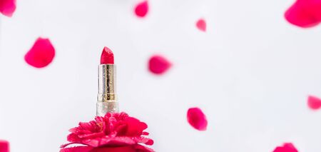 Bright red pink lipstick with water drops in golden tube standing on rose flower with falling bloom petals on white background. Moisturizing and natural components cosmetic and makeup. Wide Banner