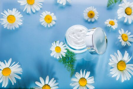 Herbal cosmetic cream in opened container with fresh chamomile flowers on a light blue glass background. Natural organic moisturizer and cleansing scin care beauty product. Top view. Copy space.