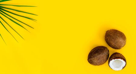 Tropical green palm leaf and half and two whole coconuts on a yellow background. Tropical summer mockup wide banner. Minimal flatlay. Natural ingredient for food and skincare beauty. Copy space. Archivio Fotografico