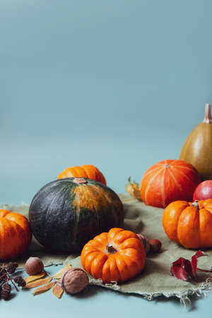 Orange and green decorative pumpkins, apples, nuts and fallen leaves in autumn harvest composition on trendy earth tones background. Fall, thanksgiving minimalism concept. Selective focus. Copy space