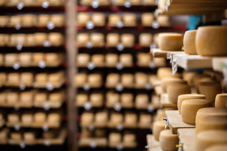 Cow milk cheese, stored in a wooden shelves and left to mature Stock Photo - 16898985