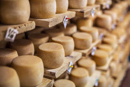 Cow milk cheese, stored in a wooden shelves and left to mature Stock Photo - 16898987