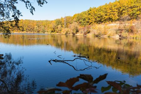 Beautiful autumn park with yellow-green trees and lake on blue sky background Stock Photo