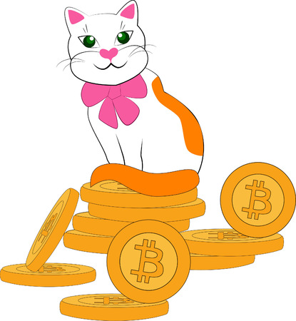 the cat on the bitcoin coin on white background