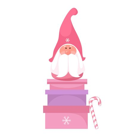 Vector illustration of a christmas gnome on a gift box
