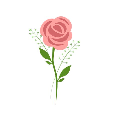 Vector illustration of a pink rose with herbs